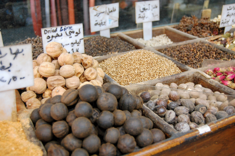 molly bendell travel food photography jordan petra